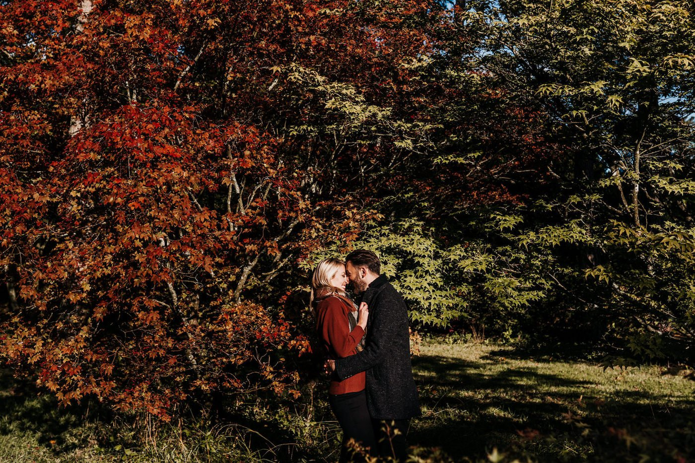Katy and Alex, Westonbirt Arboretum Engagement Shoot 6
