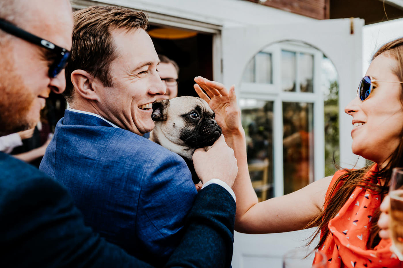 pug at wedding